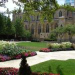 Do You Have Landscape Renovation Needs?