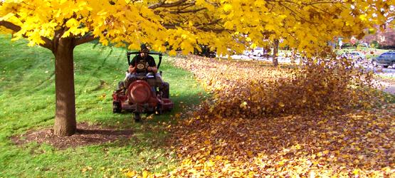 Calendar - October - Leaves