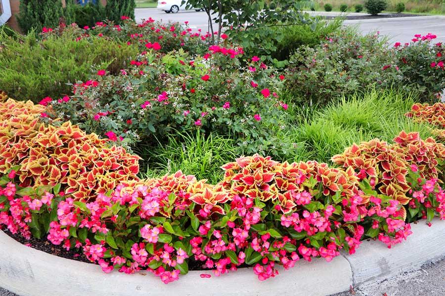 Seasonal Décor & Flowerscapes